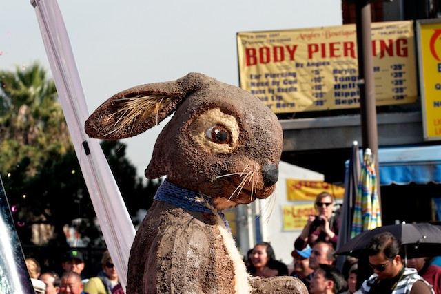 2011 marks the year of the Rabbit.
